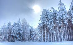 Snow Storm Traverse City, Michigan by Pamela Bevelhymer, via Flickr