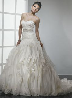 If I could ever find this dress I'd work overtime every day to get this, this is my dream wedding dress!