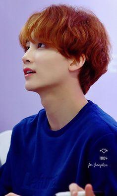 clearmilkyway Woozi, Wonwoo, Seventeen Scoups, Jeonghan Seventeen, Hip Hop, K Pop, Vernon, Boo Seungkwan, Seventeen Debut