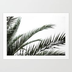 Buy Palm Trees 3 Art Print by Mareike Böhmer Photography. Worldwide shipping available at Society6.com. Just one of millions of high quality products available.