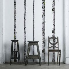 birch wall decal / vintage stools & chair