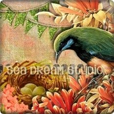 Etsy shop banner new in my graphics shop. http://www.etsy.com/listing/93305750/beautiful-bird-and-flowers-etsy-shop  Sea Dream Studio