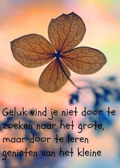 Motivational Quotes For Success Mantra, Best Quotes, Love Quotes, Dutch Words, Motivational Quotes, Inspirational Quotes, Dutch Quotes, Thing 1, Cool Writing