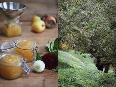 Äppelmarmelad med ingefära Munnar, Scones, Alcoholic Drinks, Table Decorations, Glass, Food, Drinkware, Corning Glass, Essen