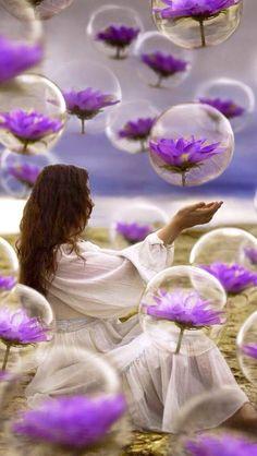 Bubble Purple Flowers