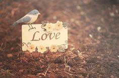 NIZIN® People Advisor: O que é amar?