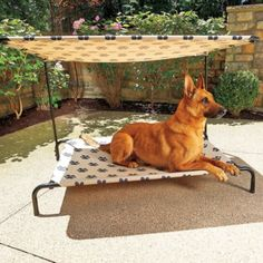 Outside Bed indoor/outdoor dog bed | outdoor dog, dog beds and indoor outdoor