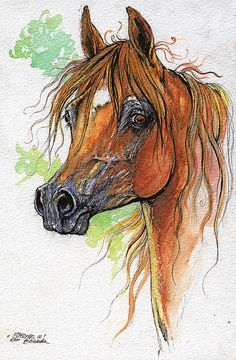 Esperanto polish arabian horse watercolor painting