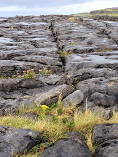 I would love to go there. The following was the previous pinner's comment - lucky person!  The Burren - Ireland I got to go here when I went to Ireland this spring.