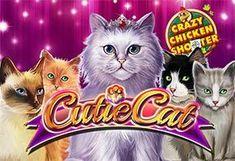 Cutie Cat Crazy Chicken Shooter - Online Casino Game at NightRush online casino Online Casino Slots, Online Casino Games, Casino Promotion, Chicken, Cats, Gatos, Cat, Kitty, Cubs