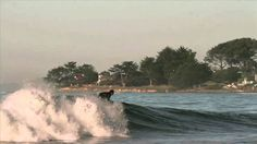Dane Reynolds - Surf is *UP!* ~ WOW, only 29 years old, soo talented*