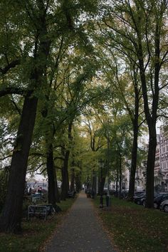 Une escapade à Amsterdam