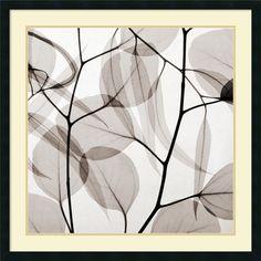 Artist: Steven N. Meyers</li><li>Title: Eucalyptus Leaves (Positive)</li><li>Frame: Satin black 1.25-inch wood</li><li>Matte: Pure white/ heritage gray</li><li>Outside dimensions: 34 inches high x 34 inches wide