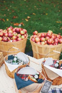 a picnic built around apple picking. Love the apple baskets as picnic baskets. More so for fall but want to do this :) Fall Picnic, Picnic Time, Summer Picnic, Picnic Set, Backyard Picnic, Picnic Parties, Beach Picnic, Sandwich Bar, Sandwich Recipes