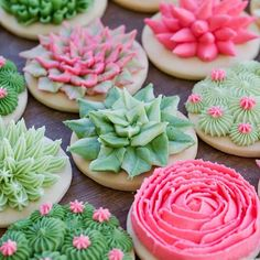 Succulent Sugar Cookies Succulent Sugar Cookies,Backen Saturday's are for succulents! In store today. Related posts:Creative Gifts For Boyfriend Anniversary Ideas - Valentines Day Gifts Ideas Roma. Iced Cookies, Cute Cookies, Royal Icing Cookies, Cookies Et Biscuits, Cupcake Cookies, Decorated Sugar Cookies, Drop Cookies, Cactus Cupcakes, Succulent Cupcakes