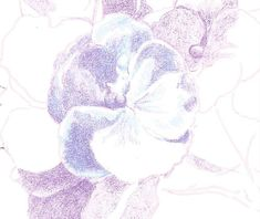 How to Draw Complex Flowers - Step 4