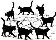 Black Cat Magic - alchemy