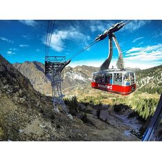 A beautiful shot of the crisp air this weekend! Did you get up to ride the tram?   #snowbird #tram #ride #fall #autumn #weekend