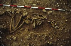 The virtually-complete skeleton dating was found on farmland in the hamlet of Racton, near Chichester, West Sussex. Racton Man's extremely rare dagger reveals his position as a warrior. Skeleton Warrior, Viking Warrior, Ufo, Bronze Age, Priest, Prehistoric, Black History, Archaeology, Sculpture