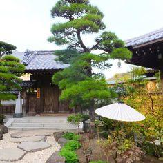 Hase Dera temple Kamakura Japan www.couchflyer.com #japan #kamakura #travel #buddha #instagood #bestoftheday #couchflyer
