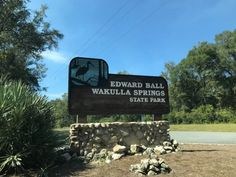 Edward Ball Wakulla Springs State Park is a stunning spot in Florida with one of the largest and deepest freshwater springs in the world. Florida East Coast Beaches, Florida Fish, Florida Water, Places In Florida, Florida Springs, Florida Resorts, Old Florida, Vacation Trips, Day Trips