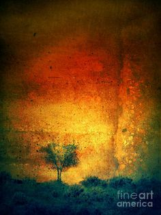 The Dreaming Tree by Tara Turner    Such beautiful colour