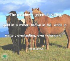 Nature's Aphorisms #97