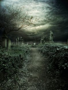 93 best haunting images on pinterest abandoned places dark and gothic fandeluxe Choice Image