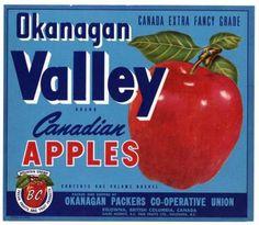 VALLEY Vintage Canadian Apple Crate label, blue, Okanagan