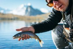 Cristivomer (Salvelinus Namaycush) is a freshwater char living mainly in alpine lakes, also known as Mackinaw or Touladi in North America. Photo by @klorklor . . . . . #flyfishing  #フライフィッシング #catchandrelease #fishing #travel #explore #outdoor #Switzerland #alps #feelthealps #campvibes #cristivomer #mackinaw #touladi #gooutside #landscape #thecheesehatch