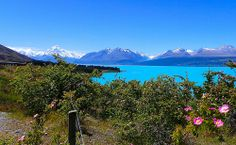 Drive up to Mt. Cook National Park