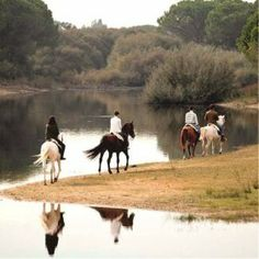 Charneca a Cavalo, Portugal