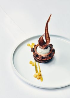 Nice dessert with chocolate drawn on a simple white plate ., Desserts, Nice dessert with chocolate drawn on a simple white plate Fancy Desserts, Köstliche Desserts, Plated Desserts, Dessert Recipes, Weight Watcher Desserts, Gourmet Recipes, Sweet Recipes, Low Carb Dessert, Pastry Art