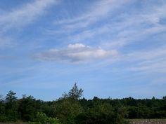 菰野町菰野地区  平成24年9月25日早朝撮影