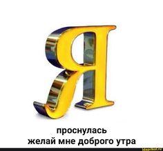 Stupid Memes, Stupid Cat, Dankest Memes, Hello Memes, Happy Memes, Russian Memes, Cartoon Profile Pics, Cute Love Memes, Funny School Memes
