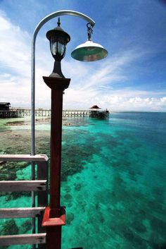 Derawan Island is well known as the Critters Paradise. with terrains that vary from walls and fringing reefs to underwater caverns.    One of the favorite sites is located just beneath the 200-meter long jetty of Derawan Island, which is the habitat for crabs, squids, crocodilefish, scorpionfish, seahorses, worms, tunicates, and multi-colored nudibranchs.