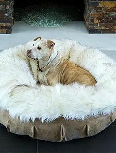 Available in five beautiful designs and perfect for cuddling, the Animals Matter® Faux Fur Puff Pet Bed provides your pampered pet with a comfortable place to call their own without sacrificing your home's décor.