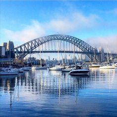 Harbor day in Sydney