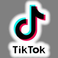 53 Tik Tok Logo Ideas Tik Tok Tok Logos