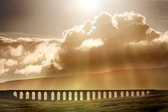One of my favorite places to go for a walk, Ribblehead Viaduct, North Yorkshire, UK. Yorkshire Day, Yorkshire England, North Yorkshire, Cornwall England, Ribblehead Viaduct, Wanderlust, Northern England, British Countryside, Fauna