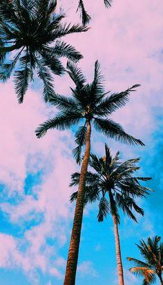 Free Wallpaper: Bali - Simple + Beyond Cute Backgrounds, Aesthetic Backgrounds, Aesthetic Iphone Wallpaper, Phone Backgrounds, Aesthetic Wallpapers, Cute Wallpapers, Wallpaper Wallpapers, Iphone Background Wallpaper, Wallpaper For Your Phone