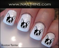 Boston Terrier Nail Decal Dog Nail Design Canine Nail Art NAILTHINS~~just for you DEVIN!!