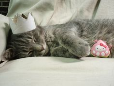 animals, cat, crown, cute, hello kitty