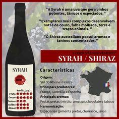 - Características da casta e do vinho Syrah Vinho Cabernet Sauvignon, Guide Vin, Wine Jobs, One Glass Of Wine, Pinot Noir Wine, Wine Photography, Expensive Wine, Wine Packaging, Recipes
