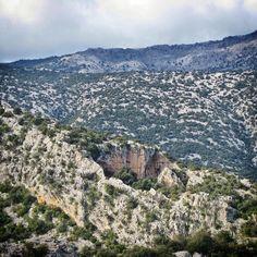 Il villaggio è collocato tra macchioni di cisto e lecci, in una dolina creatasi per sprofondamento tettonico nel cuore del monte tiscali. by zio_cocky - via www.bbcalagonone.com