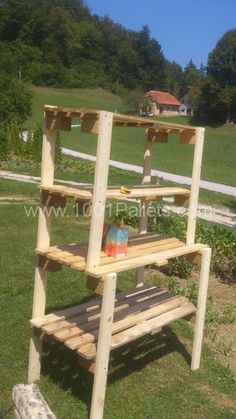 DSC 10011 450x800 Pallet shelves in pallet furniture diy pallet ideas  with Shelves Pallets