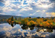 New Norfolk_autumn woodlands - hobart tasmania tourism. Travel And Tourism, Tasmania, Australia Travel, Norfolk, Places To Go, Things To Do, Scenery, The Incredibles, Island