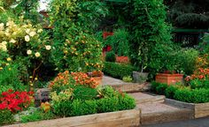 Planting fruits and vegetables in the front yard is a new gardening trend. (Source: gpidesign)