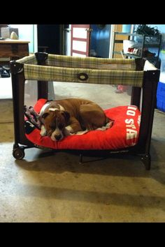 Repurpose a kids Pack & Play into a portable dog bed. Just cut off one square of the netting. The pups LOVE it!!