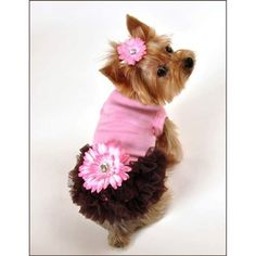 The Alexis Dog Dress is pink with chocolate chiffon ruffles and an attached pink daisy with a large crystal center.